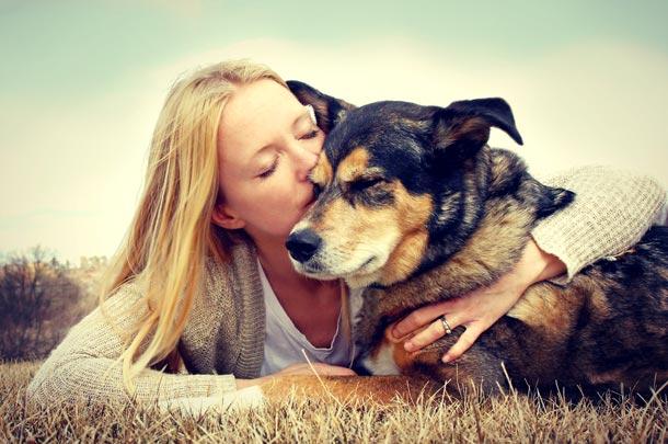 Anestesia y quirófano veterinario