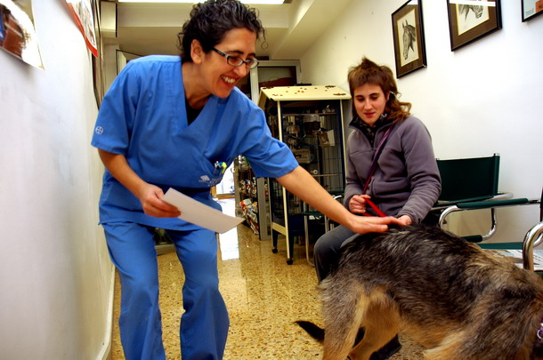 Centro veterinario La Salut Barcelona especialistas esterilizaciones perros y gatos