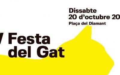 Festa del Gat Gracia 2018